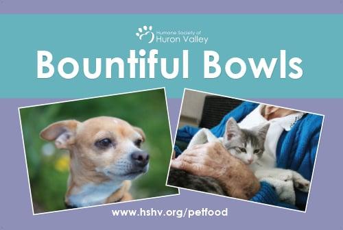 Bountiful Bowls