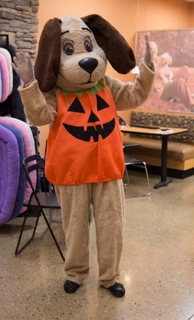 Happy the Hound HSHV mascot in Halloween costume