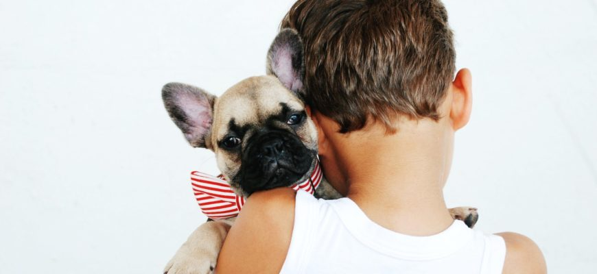 Children and Dogs: Important information for Parents