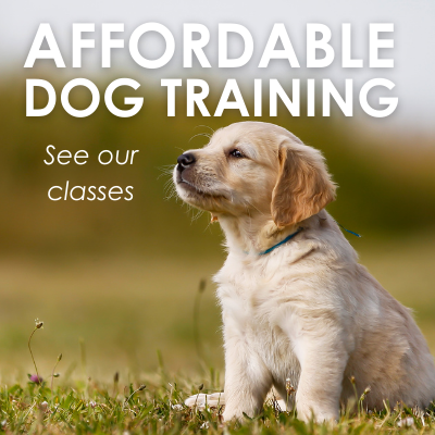 Affordable Dog Training - See our classes